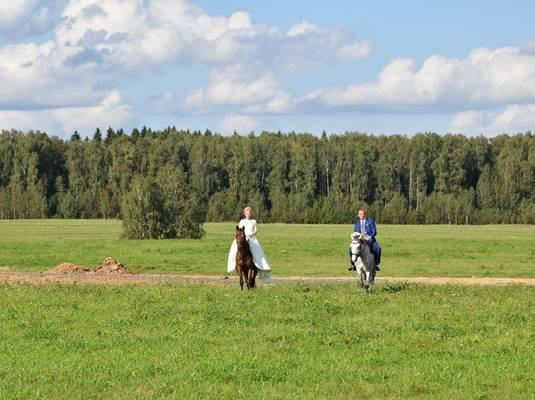 База экологического туризма «Головинка»