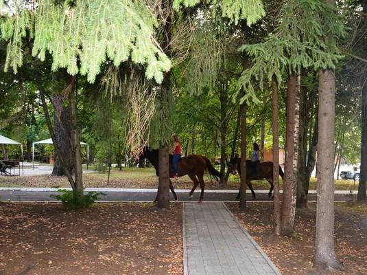 Парк-отель «Лесные пруды»
